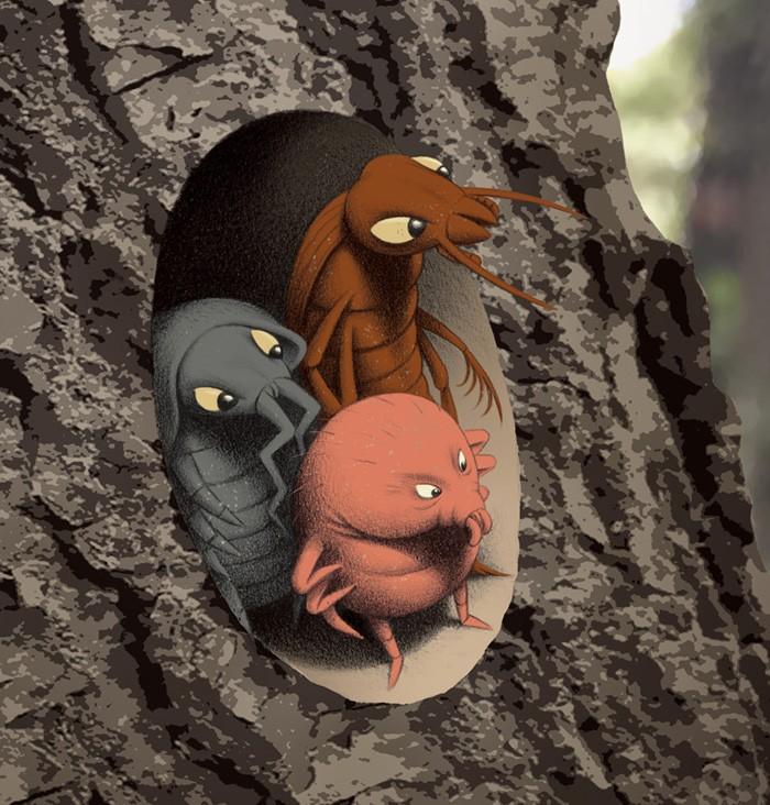 Tree climb crop 2